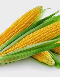 Видеть во сне как ешь кукурузу thumbnail